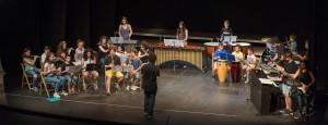 AUDICIÓ ESCOLA MUSICA SFG TEATRE 17-6-2016 - 17062016-1